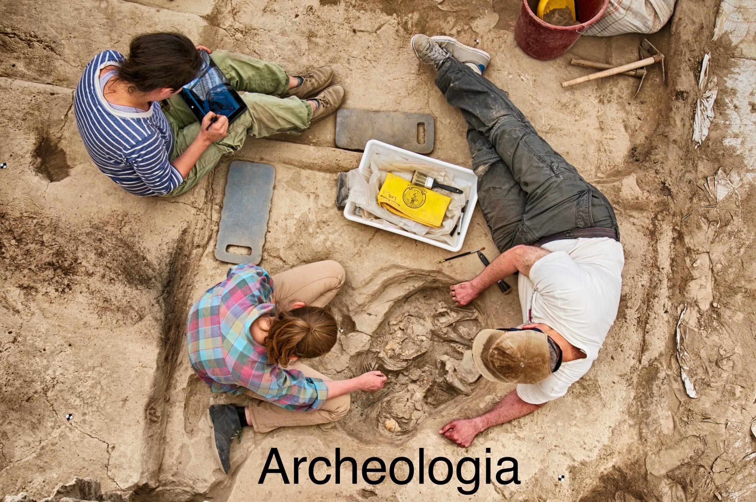 Dodatkowe informacje dla kandydatów na studia na kierunku archeologia